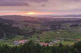 Vionta - The Freixenet family's Galician adventure