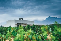 Jade Vineyard – Jinshan, Helan Mountain East, Ningxia