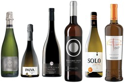 Extremadura wines: 21 to try