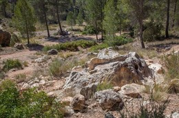 Exploring the history of Utiel-Requena