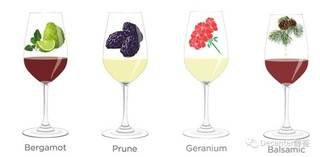Tasting notes decoded: Bergamot, Prune, Geranium and Balsamic