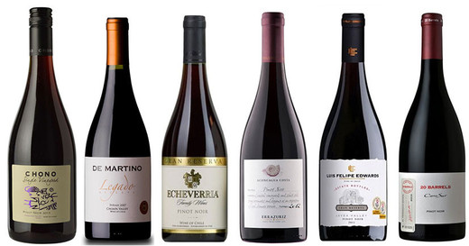 17 Chilean Pinot Noirs recommended at Decanter Panel Tasting