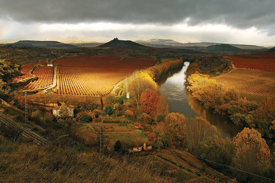 Image: vineyards in Rioja, credit Decanter