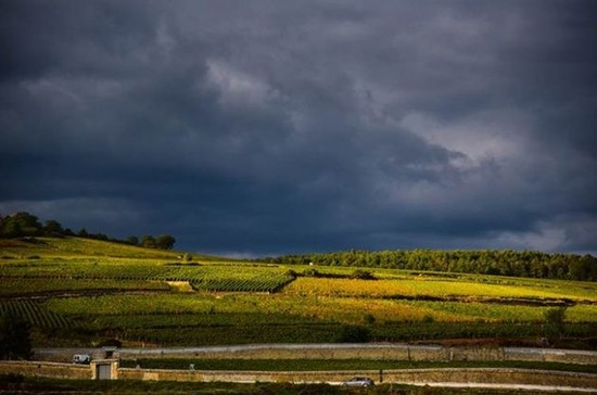 Image: Looming skies over Pommard pressage early October storms. Credit: Gretchen Greer
