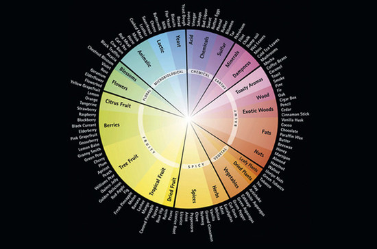 Riedel aroma wheel