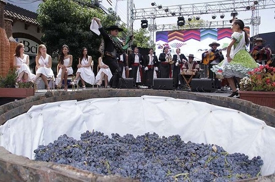 Age-old traditions at Colchagua's Fiesta de la Vendimia. Credit: colchaguavalley.cl