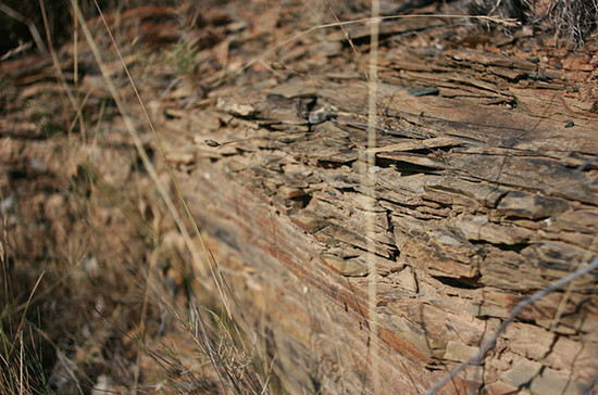 Image: An example of a schist vineyard in Terraces du Larzac, Languedoc-Roussillon. Credit: Andrew Jefford