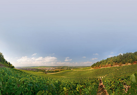Image: looking towards the town of Chablis from the Vaudésir grand cru – believed to be one of the more underrated climats by producers Louis Michel and William Fèvre, credit Decanter