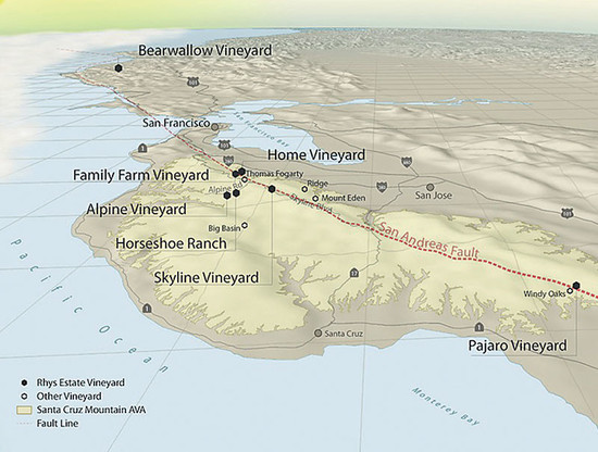 Rhys Vineyards has plots either side of the San Andreas Fault, some just 300m apart, which have different soils and taste profiles