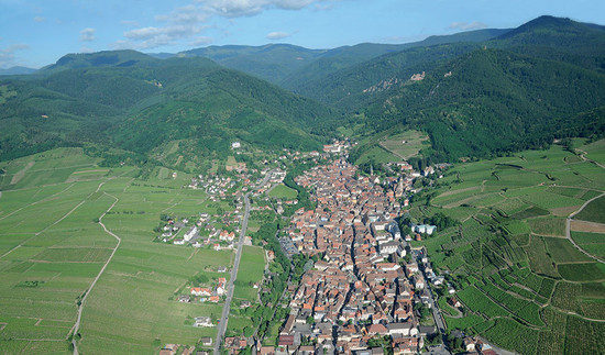 Ribeauvillé in Alsace where Trimbach Rieslings, including its wine from the Geisberg grand cru, are made around the fault line
