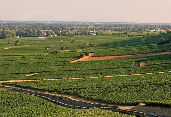 the Bressandes premier cru is located in the northern sector of the Beaune region