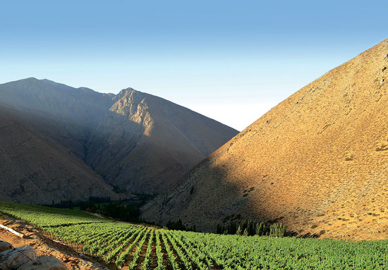 Image: at 2,200m, Viñedos de Alcohuaz in Elqui Valley is Chile's highest commercially planted vineyard
