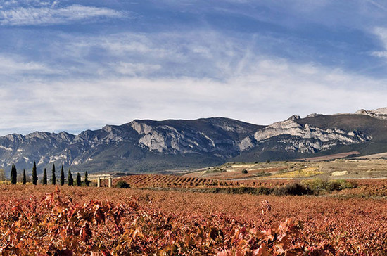 Torre de Oña, a 4.25-hectare Tempranillo vineyard owned by Rioja Alta in the Rioja Alavesa area. Credit: Rioja Alta / Decanter magazine Joy of Terroir