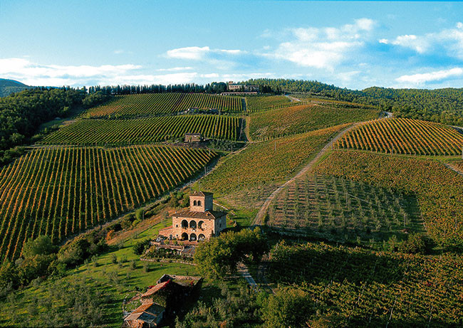 Castello d'Albola, the highest vineyard in Chianti Classico
