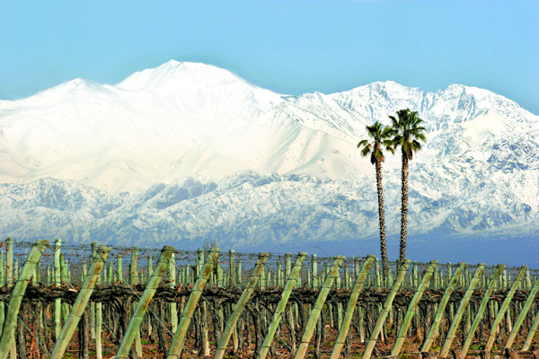 WSET Level 2: Argentina, Chile, South Africa and Australia – wine label terms showing quality