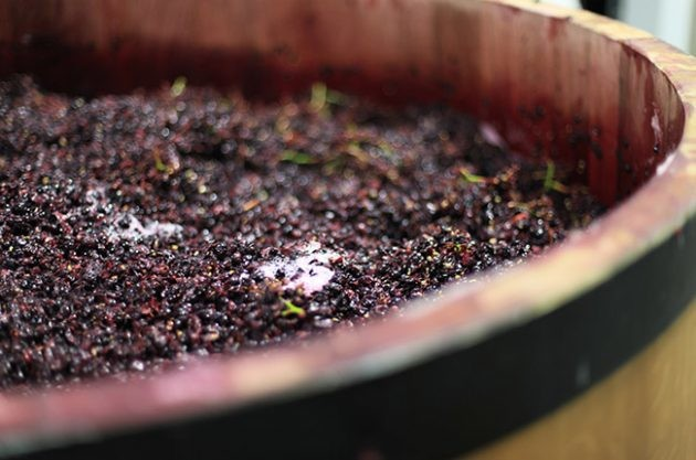 Four new trends in California winemaking