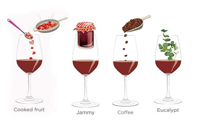 Tasting notes decoded: Cooked fruit, jammy, coffee, eucalyptus