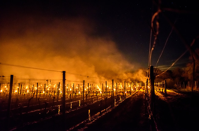 How can winemakers prevent frost? – ask Decanter