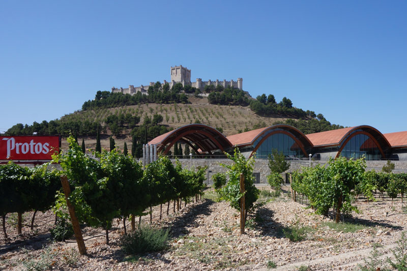 Bodegas Protos: Making outstanding wines since 1927
