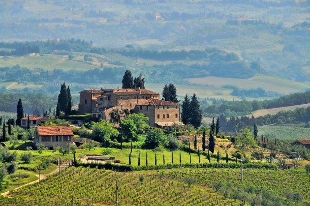 Italian grape quiz – Test your knowledge