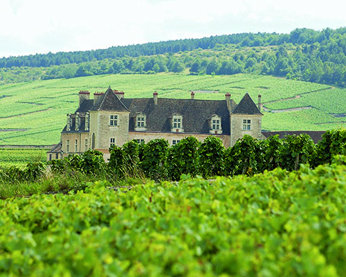 History of wine in 100 bottles: Monasteries – Clos de Vougeot