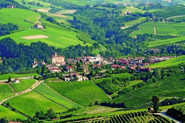 History of Wine in 100 Bottles: Barolo