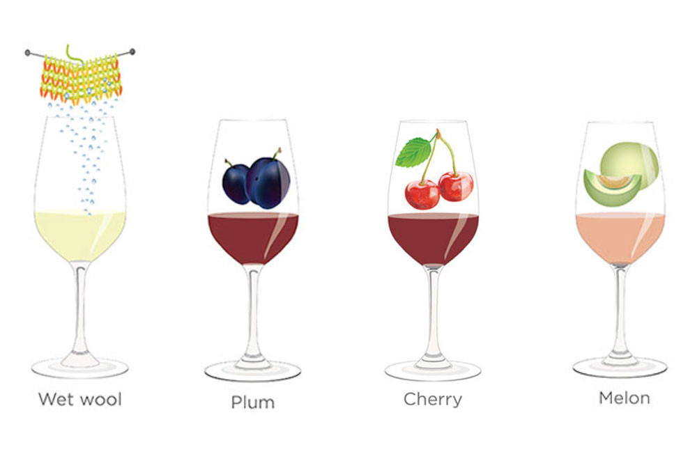 Tasting notes decoded: Wet wool, plum, cherry, melon
