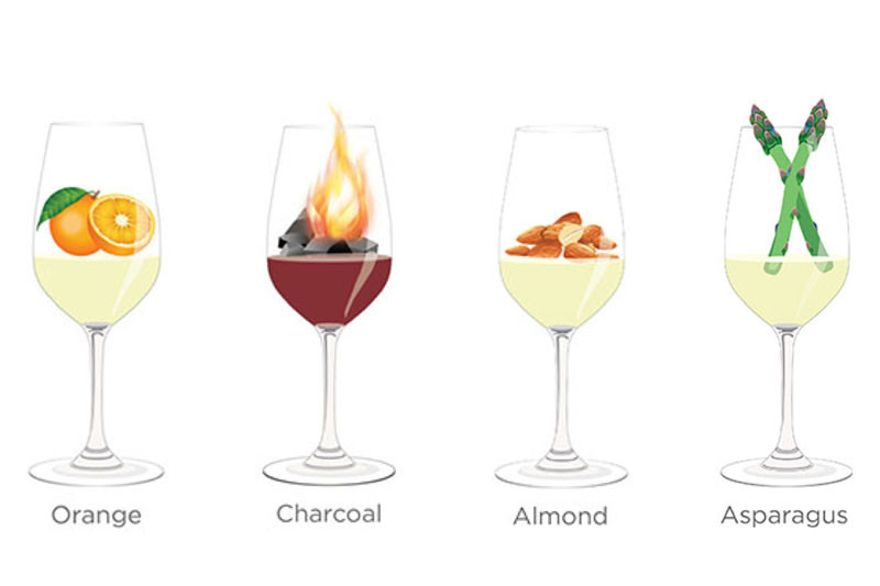 Tasting notes decoded: Orange, charcoal, almond, asparagus
