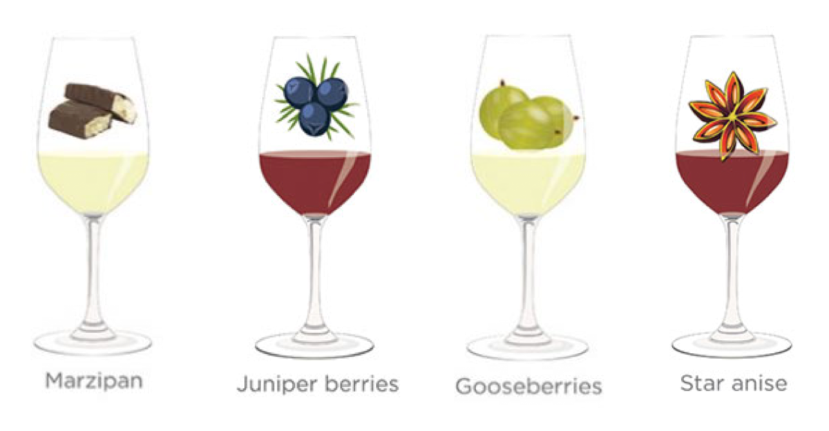 Tasting notes decoded: Marzipan, juniper berries, gooseberries, star anise