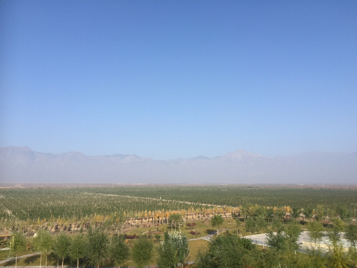 'The ambition and drive you find in Ningxia is infectious'--Decanter column