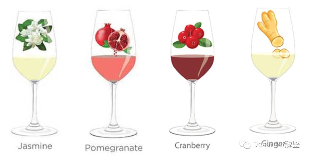 Tasting notes decoded: Jasmin, Pomegranate, Cranberry and Ginger
