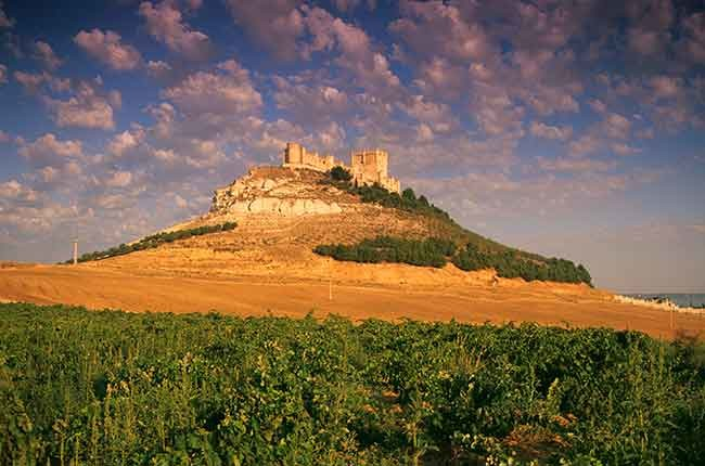 The best of Castilla y Léon's wine regions