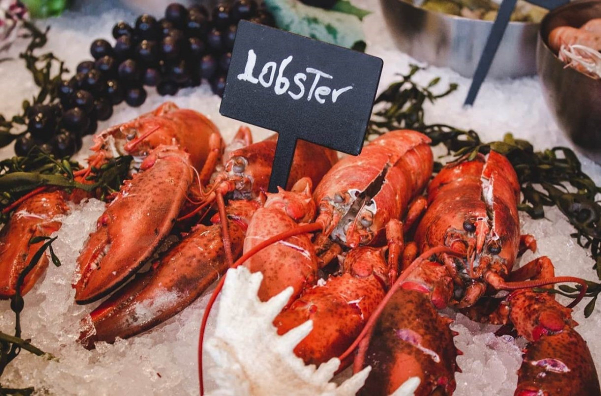 Which wines go well with lobster? - Ask Decanter