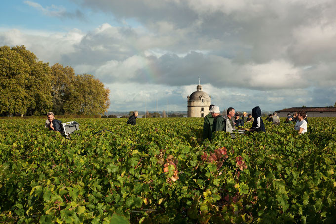 Top Bordeaux 2017 wines in the bottle: Left Bank report