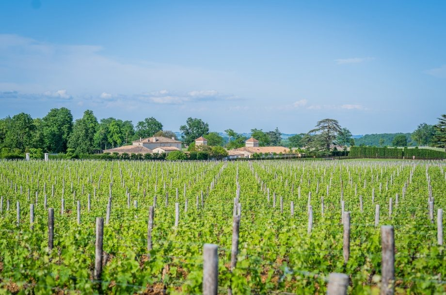Exclusive first look inside billionaire Jack Ma's Bordeaux project