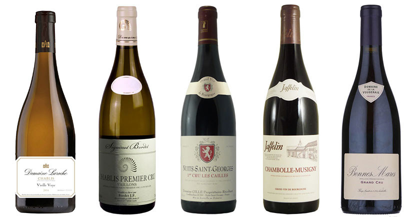 The summer Burgundy charm - 8 award-winning whites and reds