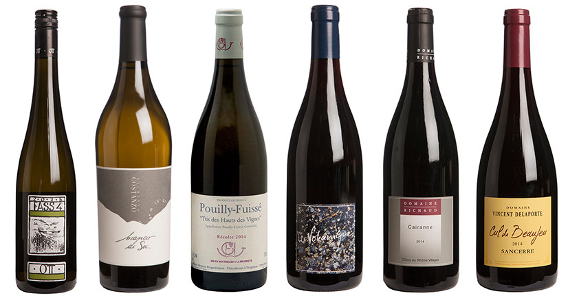The most exciting dry wines of 2016 - Decanter (Part II)