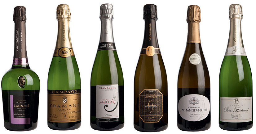 13 Grower Champagnes above 92 points – Decanter Panel Tasting