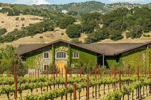 yountville single parents located in the heart of scenic napa valley, the veterans home of california- yountville (vhc-yountville) is a community of and for veterans founded in 1884 .