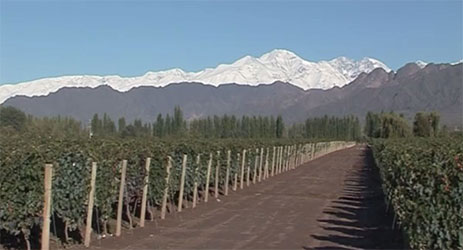 Mendoza: Land of Elements