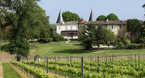 So you want to be a Bordeaux winemaker?