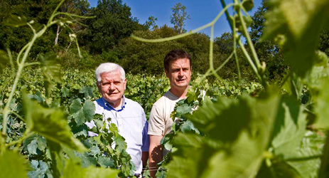 Will a biodynamic wine become Bordeaux's first single-vineyard AOC?