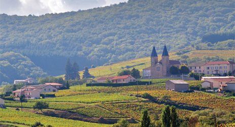 Exploring Burgundy - Beaujolais introduction