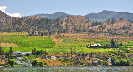 Canadian wine regions - Ontario and British Columbia