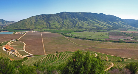 Wine regions (II) - Maipo Valley, Rapel Valley, Curico Valley, Maule Valley and Southern Region