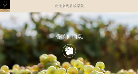 Champagne Council launches online course in Chinese