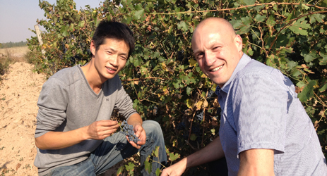 Ningxia expands international winemakers competition